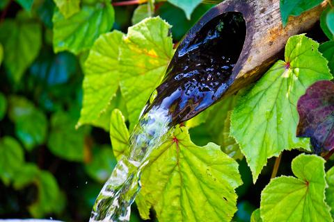 湧き水も湧き続けるからこそ価値があります。