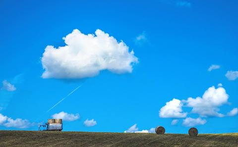 空を見ていると青も白も良いものだと思いますが…。