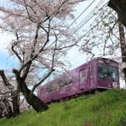 電車は私たちの生活と密接なつながりを持ちます。