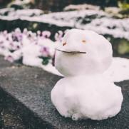 ちょっとの雪でも立派な雪だるまが作れるんです。