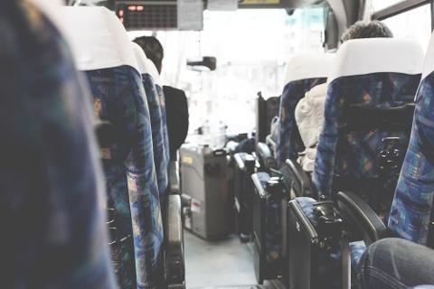 移動はバスでも十分快適です。