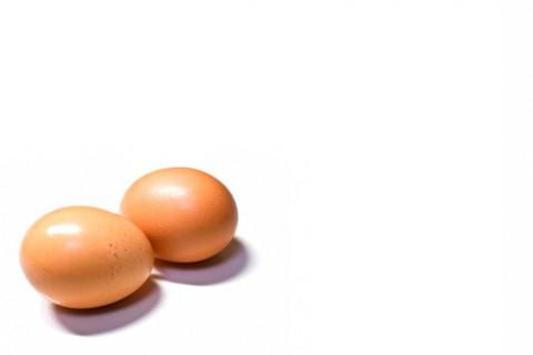卵が先か鶏が先かは分かりませんが。