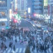 東京の普通の生活とはなんでしょうか。